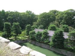 f:id:AssamEarlgray:20081001005416j:image