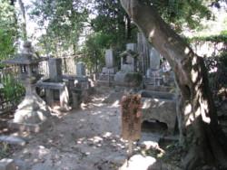 f:id:AssamEarlgray:20081010011943j:image